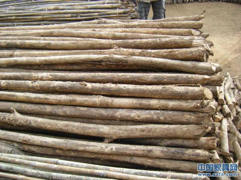 长期供应非洲柚木,红木原木