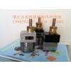 DISK油漆齿轮泵  静电喷漆泵