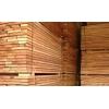 供应椿木板材