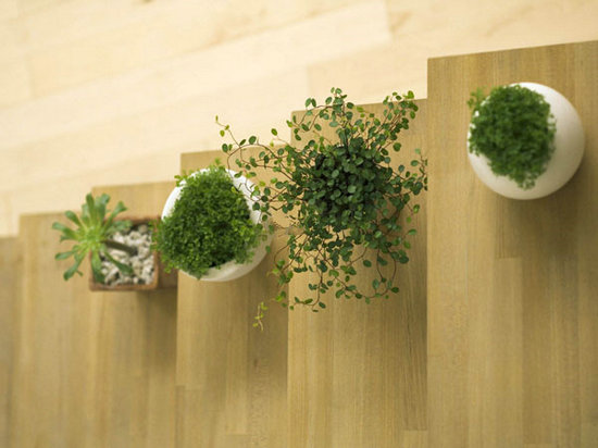 打造家具绿色产业链,东莞已经出发
