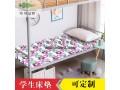 学生床垫_单人折叠床垫厂家直销_棕轩床垫
