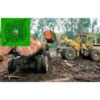 澳洲酸枝 红木家具澳洲酸枝木原木招代理商