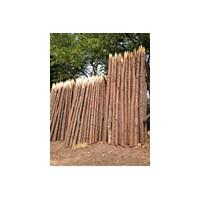 东莞深圳中山广州惠州供应松木桩打桩木河道防护井下支撑木